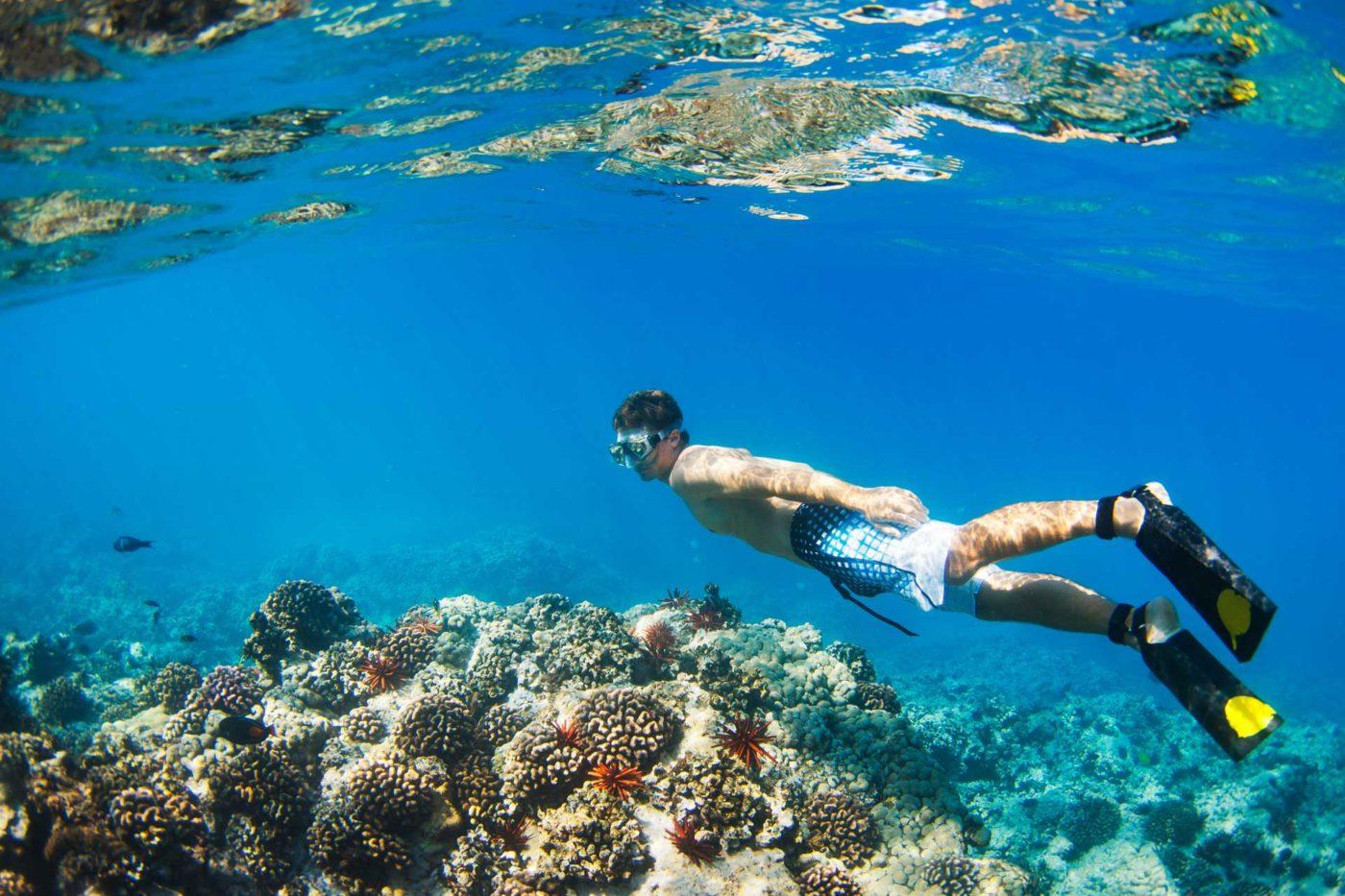 snorkeling ile maurice trou d'eau douce - vacances ile maurice